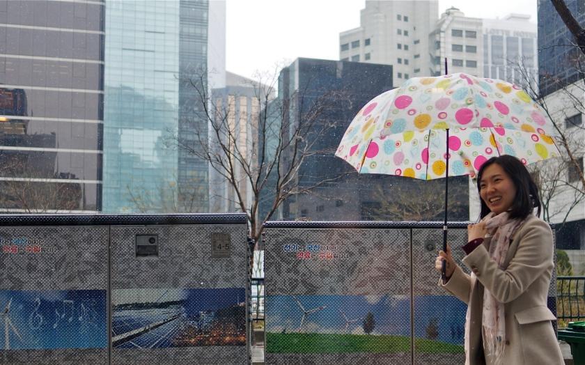 umbrellas 3