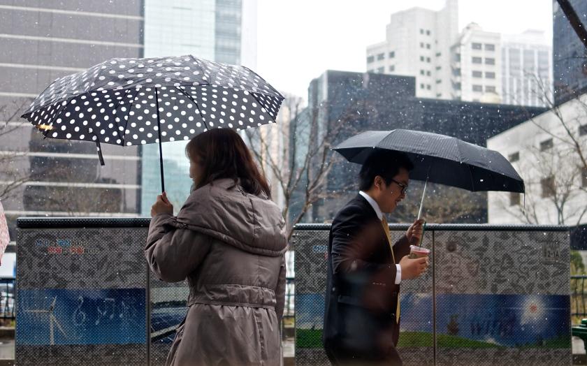 umbrellas 4