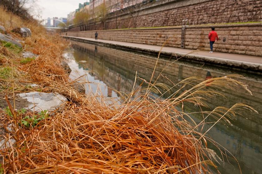 grass & stream