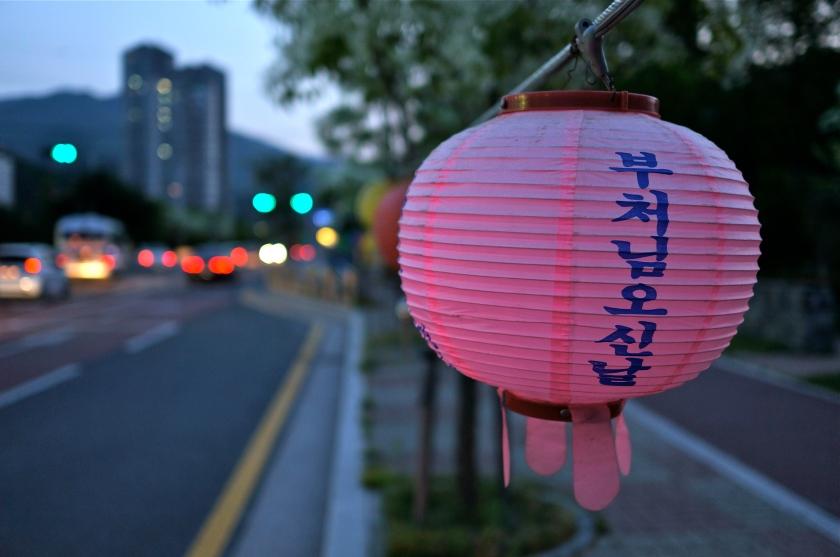 pink lantern & apartments