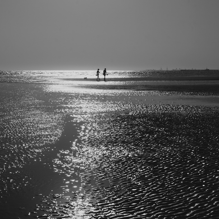 A Close Encounter on the Mudflats