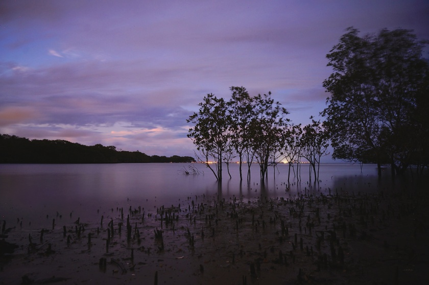 nudgee creek mouth dusk