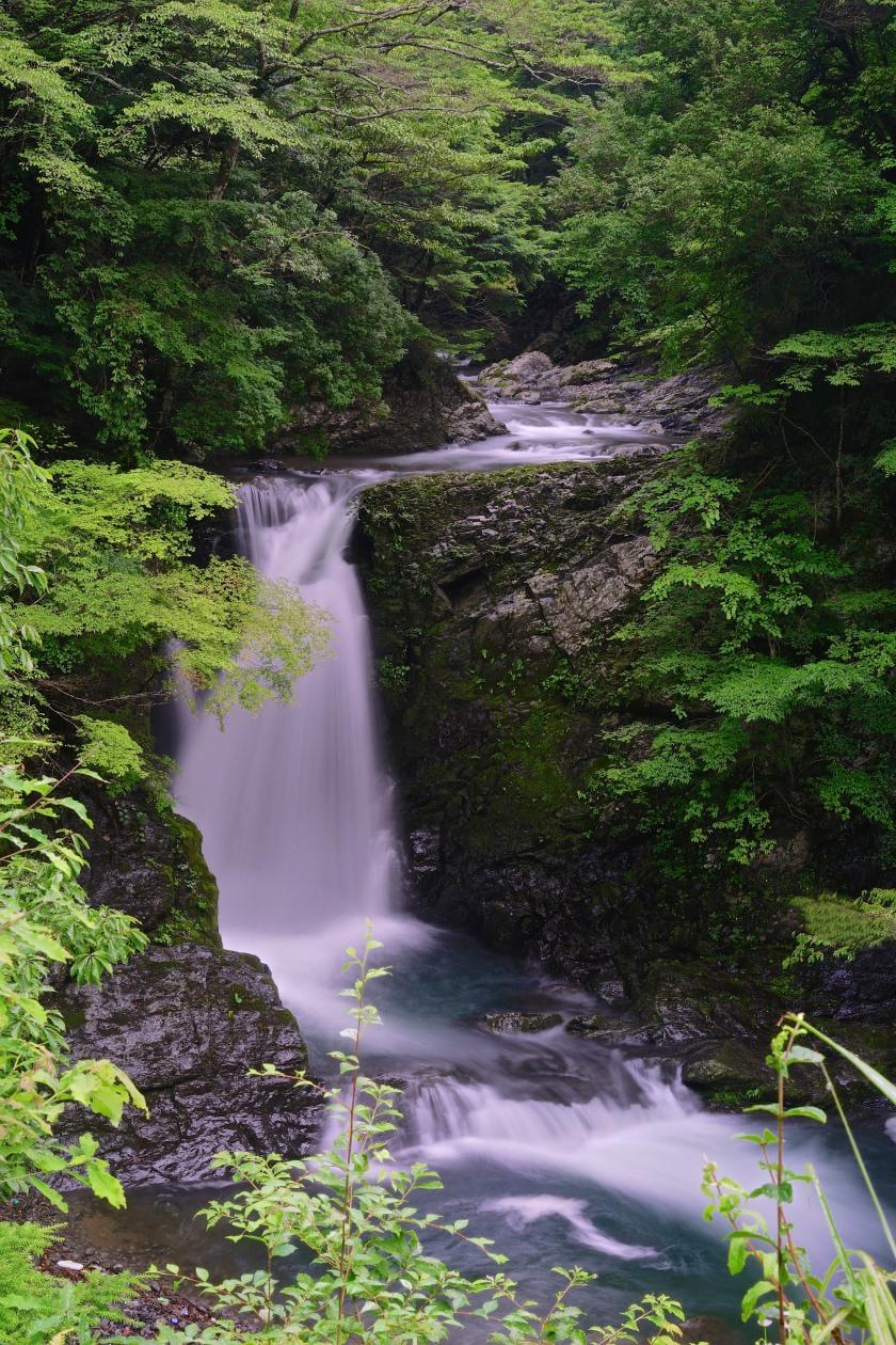 waterfall kohechi