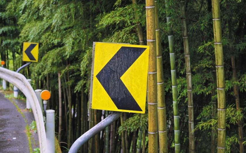bamboo & road sign shikoku